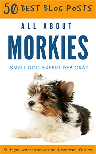 All About Morkies: 50 Best Blog Posts: Stuff You Want to Know About Maltese-Yorkies (English Edition)