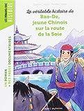 """Afficher """"La Véritable histoire de Bao-De, jeune chinois sur la route de la soie"""""""