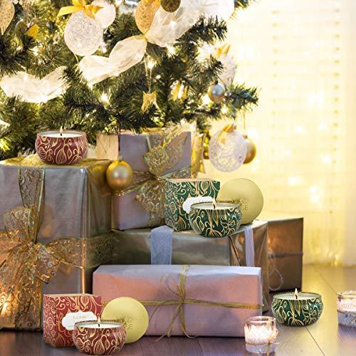 Duftkerzen Set Kürbis Zimt & Zedernholz Tanne für Weihnachten & Advent, 100% Sojawachs, je 185g 45Std