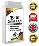 Fish Oil Supplement For Dogs Review and Comparison