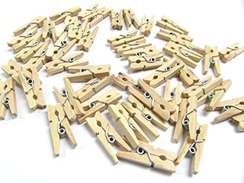 Pack of 100 Mini Wooden Craft Pegs