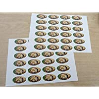 Pack of 48 Fox, 40x20mm Oval Seal Labels, Stickers for Craft, Decoration, Gift Wrapping, Presents, Envelopes, Bags or Cards