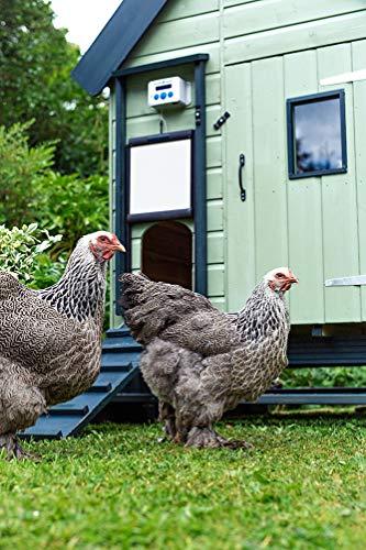 ChickenGuard Premium Türöffner - 3