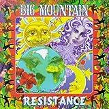 Songtexte von Big Mountain - Resistance