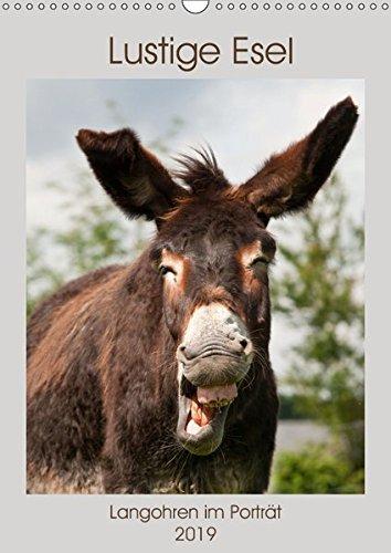 Lustige Esel - Langohren im Porträt (Wandkalender 2019 DIN A3 hoch): Eselfotos die Freude bereiten (Monatskalender, 14 Seiten ) (CALVENDO Tiere)