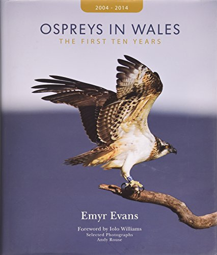 ospreys-in-wales-the-first-ten-years