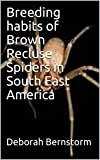 Breeding habits of Brown Recluse Spiders in South East America