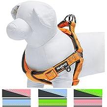 Blueberry Pet 3M Reflective Step-in Pastel Baby Orange Neoprene Paddd Dog Harness, M/L
