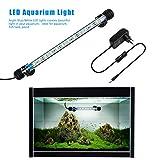 FTALGS FTALGS LED Aquarium-Licht Unterwasser BeleuchtungAufsatzleuchte Abdeckung Wasserdicht Lampe Stecker EU für Fisch Tank mit (1.8x28cm, White)