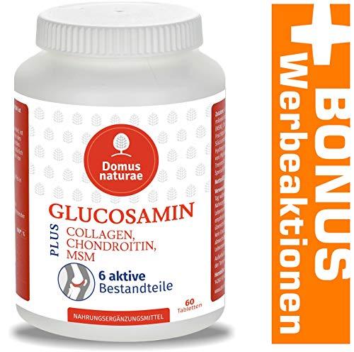 GLUCOSAMIN PLUS CHONDROITIN, MSM, COLLAGEN, INGWER, Komplex von Zitrusbioflavonoiden | 100{6768eced310e7fd75f62c6656554b9d3cd5223e4c8077cb6f1bf1faaf4233bea} Vegane 60 Tabletten | Optimaler Ergänzungsmittel Komplex von 6 aktiven Stoffen für die Gelenkpflege