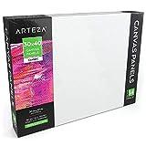 Arteza Paneles de lienzo para pintar cuadros   30x40 cm   Pack de 14   100% algodón   Imprimación sin ácidos   Lienzos grandes para artistas profesionales, aficionados y principiantes