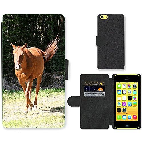Just Mobile pour Hot Style Téléphone portable étui portefeuille en cuir PU avec fente pour carte//m00138834Horse trot-Trotter Animaux//Apple iPhone 5C