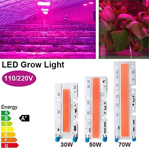 Diodo Grow Light,30W 50W 70W Alto Voltaje COB Chip LED Full Spectrum Plant Growing Phyto lamp para Plantas hidropónicas de interior y cultivo de flores (70W 220V)