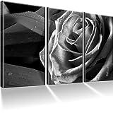 Rose / Blume Bilder auf Leinwand mit Keilrahmen ! Schwarz Weiß / 3 XXL Bilder / Wandbilder / Kunstdruck / Leinwandbild