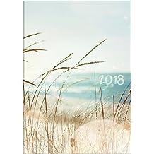 Brunnen 107951503 Buchkalender Modell 795, 1 Seite = 1 Tag, 145 x 206 mm, Grafik-Einband Strand, Kalendarium 2018