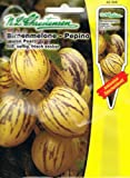 Birnenmelone Pepino Solanum muricatum Melone