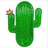 Mejor Flotador de Cactus en Amazon