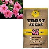TrustBasket Petunia pink Flowers Seeds (GMO Free)
