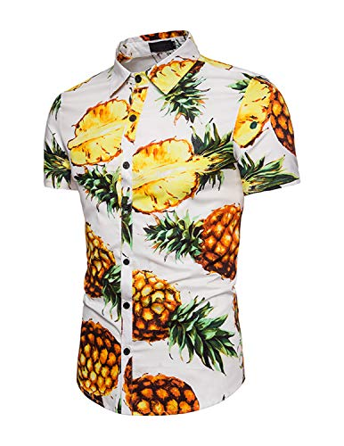 Earlish Herren Aloha Hemd Tropical Beach Ananas Vintage Flower Print Hawaiian Shirt - mehrfarbig - Etikett XXX-Large=US Large -