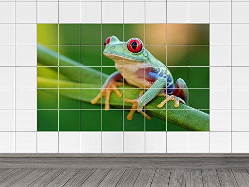 Adesivo piastrelle Sticker albero rana verde sul ramo per il vostro bagno (piastrella: 15x25cm // Immagine: 150x100cm (BxH))