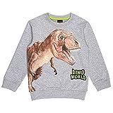 DINO WORLD Jungen Sweatshirt, Hellgrau Meliert, Größe 116, 6 Jahre