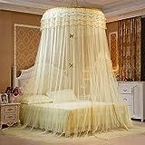 Moskitonetz Prinzessin Traum Schmetterling Kuppel mücken netz Doppelbett Reise With A Full Hanging Kit Durch GRD (gelb)