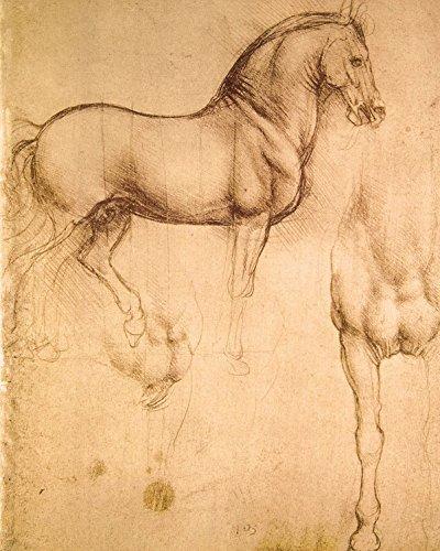 1art1 87396 Leonardo Da Vinci - Pferdestudie, 1493-1494 Poster Kunstdruck 50 x 40 cm