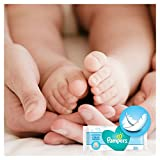 Pampers Complete Clean Baby Wipes Baby Fresh Scent, 768 Wipes - Pack of 12 Bild 3