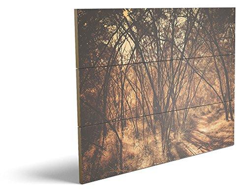 Im Wald, qualitatives MDF-Holzbild im Drei-Brett-Design mit hochwertigem und ökologischem UV-Druck Format: 80x60cm, hervorragend als Wanddekoration für Ihr Büro oder Zimmer, ein Hingucker, kein Leinwand-Bild oder - Bananen-kostüm Im Mann
