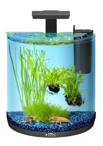 Tetra AquaArt Explorer Line Aquarium Komplett-Set 30 Liter anthrazit (gewölbteFrontscheibe, langlebige LED-Beleuchtung, ideal für die Haltung von Krebsen) anthrazit, 30 liters -