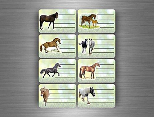 16-x-sticker-adesivo-etichetta-quaderno-scolastico-libro-raccoglitore-cavalli-cavallo