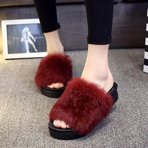 DM&Y 2017 Coniglio vera parola di trascinamento Miss Mao Zhonggen skid pantofole felpa pantofole moda crosta spessa Red
