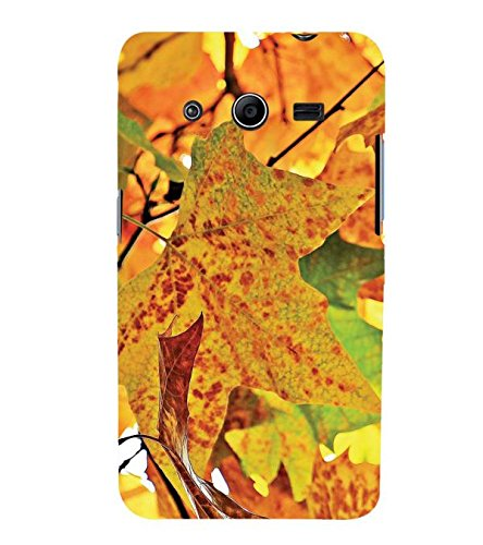 YuBingo Samsung Galaxy Core 2 G355H :: Samsung Galaxy Core Ii :: Samsung Galaxy Core 2 Dual Designer Phone Back Case Cover ( Autumn Leaves )  available at amazon for Rs.535