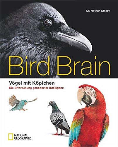 Bildband Vögel: Überflieger. Vögel mit Köpfchen. National Geographic präsentiert wunderschön illustriert die faszinierende Erforschung der gefiederten Intelligenz. (Vögel Illustrierte)