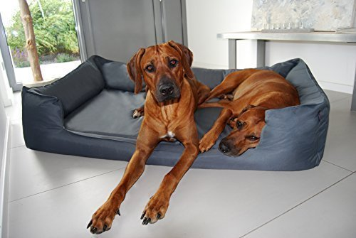 TIERLANDO® Orthopädisches Hundebett Goofy VISCO fest gewebtes Polyester M L XL XXL XXXL | 90-185 cm | (G5 | 130 x 100 cm, 02 | Graphit) - Visco-plüsch Matratze