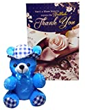 Thank You Gifts - Thank You Greeting Card With Soft Teddy (Blue)