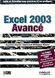 Excel 2003 avancé - Guide de formation avec exercices et cas pratiques
