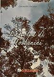 La colpa di Toscanini