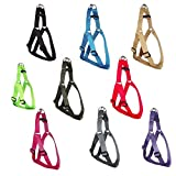 Adjustable Pet Dog Harness, Small, Medium, Large & XL, Various Colours (Red, Small)