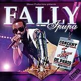 Fally au Zenith de Paris