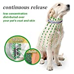 u-picks dog flea collar,6 months flea and tick control protection for dogs cats,adjustable size&waterproof,stop pest bites&itching(grey) U-picks Dog Flea Collar,6 Months Flea and Tick Control Protection for Dogs Cats,Adjustable Size&Waterproof,Stop Pest Bites&Itching(Grey) 51WTxW3XJbL