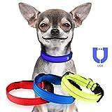 Jinzhao Hundehalsband-LED Hundehalsband mit wiederaufladbarem USB-Licht, 3 Leucht- / Reflektionsmodi-Strings, Verstellbarer D-Ring mit Schnalle im Freien (Blau 16.5''-24.4''Neck L)
