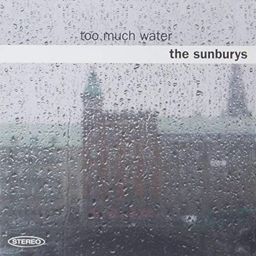 Too Much Water [Vinyl LP]