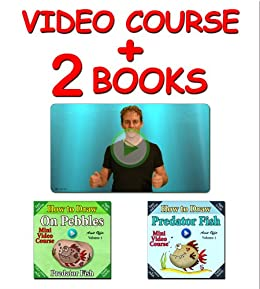 Video Course: How to Draw Predator Fish on Pebbles (2 books + Video Course) (Drawing Video Courses - How to Draw on Fish Book 1) (English Edition) par [offir, amit]