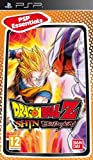 Essentials Dragonball Z Shin Budokai [Importación italiana]