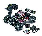Carson 500404091 - 1:16 X16 Mini Desert Warrior 2.4G 100 % R, Fahrzeuge