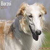 Borzoi – Russischer Wolfshund 2019 (Wall-Kalender)