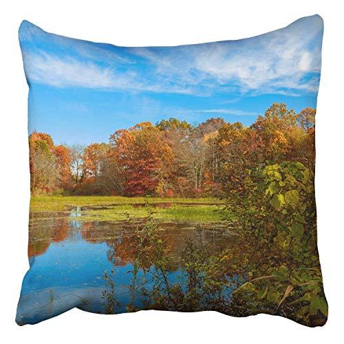 tyui7 Autumn Colorful Forest Foliage Lake-rote gelbe Farbe reflektierte Sich im Wasser Dekor Kissenbezüge Polyester 45x45 cm Platz Versteckte Zipper Home Kissen
