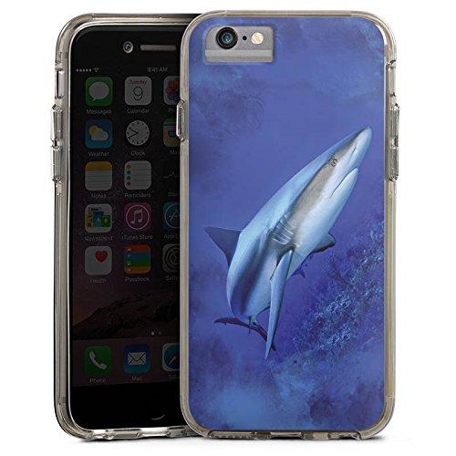 Apple iPhone 6 Bumper Hülle Bumper Case Glitzer Hülle Raubfisch Shark Hai Bumper Case transparent grau