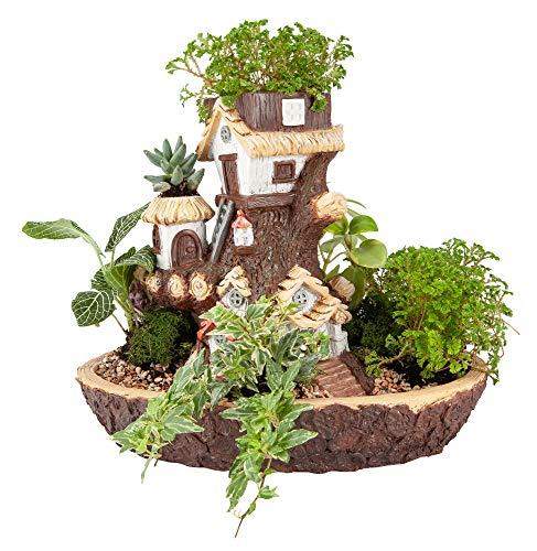 rden Übertopf, Kunstharz, mehrschichtig, Dekroative Blumentopf für Sukkulenten, Kakteen oder kleine Blumen ()